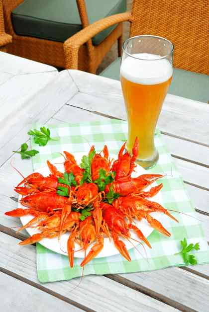 Beer with a plate of seafood